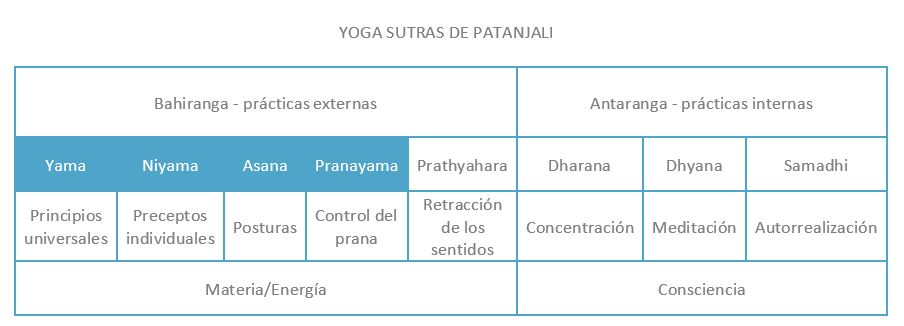 componentes hatha yoga